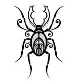 Scarabeo dell'insetto Immagini Stock Libere da Diritti