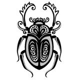 Scarabeo dell'insetto Immagine Stock Libera da Diritti