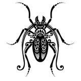 Scarabeo dell'insetto Fotografia Stock