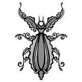 Scarabeo dell'insetto Fotografia Stock Libera da Diritti