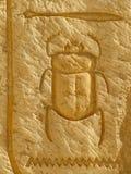Scarabeo dello Scarab Immagini Stock