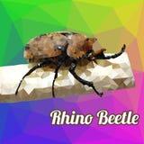 Scarabeo di rinoceronte di vettore del poligono Fotografie Stock Libere da Diritti