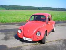 Scarabeo di Volkswagen fotografia stock libera da diritti