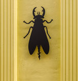 Scarabeo nero su una facciata gialla alla moda della costruzione, w del metallo Fotografia Stock