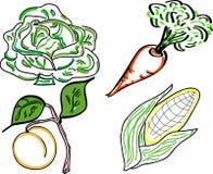 Scarabocchi di verdure Fotografia Stock Libera da Diritti