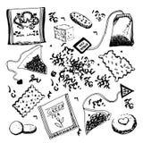 Scarabocchi disegnati a mano del tè Fotografie Stock Libere da Diritti