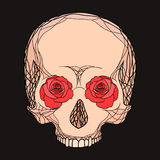 Scarabocchii l'illustrazione di un cranio umano con le rose Immagini Stock Libere da Diritti