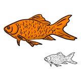 Scarabocchio arancio di schizzo dell'illustrazione di vettore del pesce disegnato a mano con il bl Fotografia Stock
