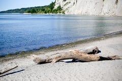 Scarborough блефует пляж Стоковые Фотографии RF