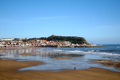 Scarborough at low tide. Royalty Free Stock Photography