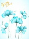 Scard floral abstracto Fotografía de archivo libre de regalías