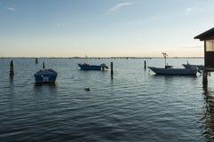 SCARDOVARI, WŁOCHY, 2016-08-06: Połów budy przy Scardovari laguną, Italy Fotografia Royalty Free
