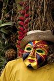scare маски вороны Стоковое Изображение