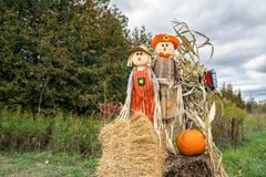 Scare Crows Pumpkins For Sale. Pumpkins For Sale Autumn Fall Decoration on the farm wagon Stock Images