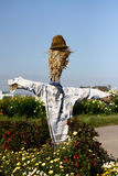Scarecrow 1 Stock Images