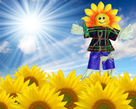 Scarecrow. In a sunflower field Royalty Free Stock Photo