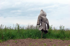 A Scarecrow. An old Scarecrow at the edge of a field Royalty Free Stock Photos