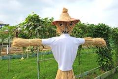 Scarecrow. A Straw Scarecrow At A Vegetable Farm stock photos