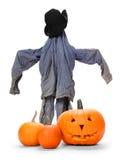 Scarecrow Stock Photography