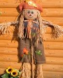 Scarecrow. Funny scarecrow on wooden bakground Stock Photos
