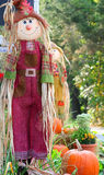Scarecrow. Smiling scarecrow decoration for fall festival Royalty Free Stock Photography