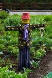scarecrow Royaltyfria Bilder