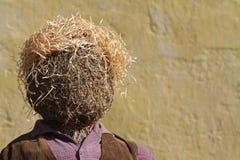 Free Scarecrow Royalty Free Stock Photo - 46173965