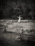 scarecrow Arkivfoton