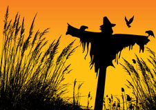 Scarecrow. Vector silhouette of a scarecrow Stock Photography