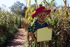 Scarecrow Sign. Scarecrow holding a blank sign so you can add a message Stock Photos