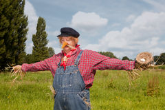 Scarecrow alive Stock Photo