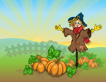 Scarecrow And Pumpkins. Royalty Free Stock Image