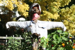 Scarecrow At Fence Royalty Free Stock Photo