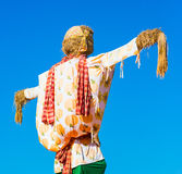 Scarecrow in the blue sky 2 Royalty Free Stock Photos