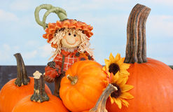 Scarecrow Boy and  Pumpkins Royalty Free Stock Photo