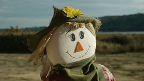 Scarecrow on breezy day in landscape stock video