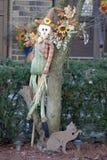 Scarecrow and cat. Stock Photos