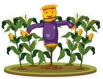 A scarecrow at corn farm royalty free illustration