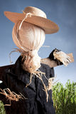 Scarecrow in corn field on a cloudy day Stock Photography