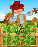 Scarecrow in the corn field. Illustration Royalty Free Stock Photo