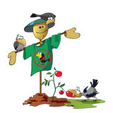 Scarecrow And Crows Royalty Free Stock Images
