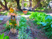 Scarecrow. A cute yet scary scarecrow in a home garden Stock Photo