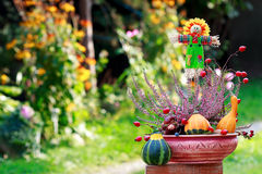 Scarecrow and decorative pumpkins in ikebana Stock Photos