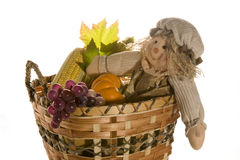 Scarecrow doll in harvest basket. Isolated on white Stock Photos