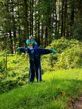 Scarecrow dressed in blue. A blue-collar scarecrow on the green grass with turquoise hair and a rubber mask for a face Royalty Free Stock Photos