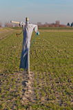 Scarecrow in a Dutch field Royalty Free Stock Photo