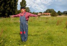 scarecrow för fågelrede s Arkivbild