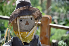 Scarecrow Face Smile Royalty Free Stock Images