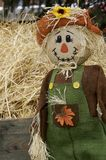 Scarecrow in the fall. Scarecrow dressed for fall celebration royalty free stock photos