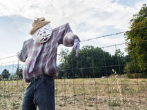 Scarecrow on farm fence Stock Images